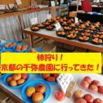 千弥農園 京都 柿狩り 口コミ